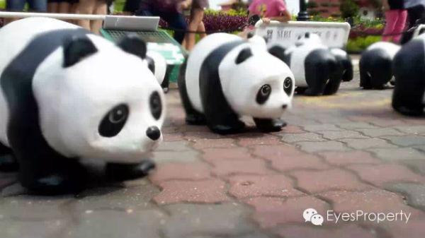 Panda in Malacca 03