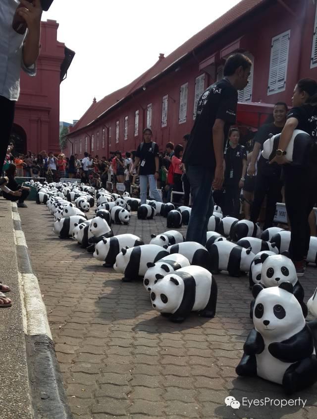 Panda in Malacca 06