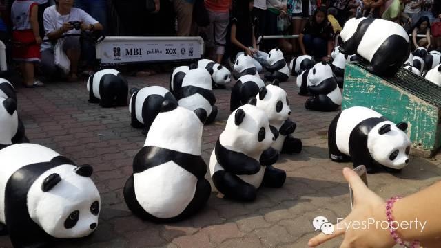 Panda in Malacca 07