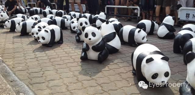 Panda in Malacca 08