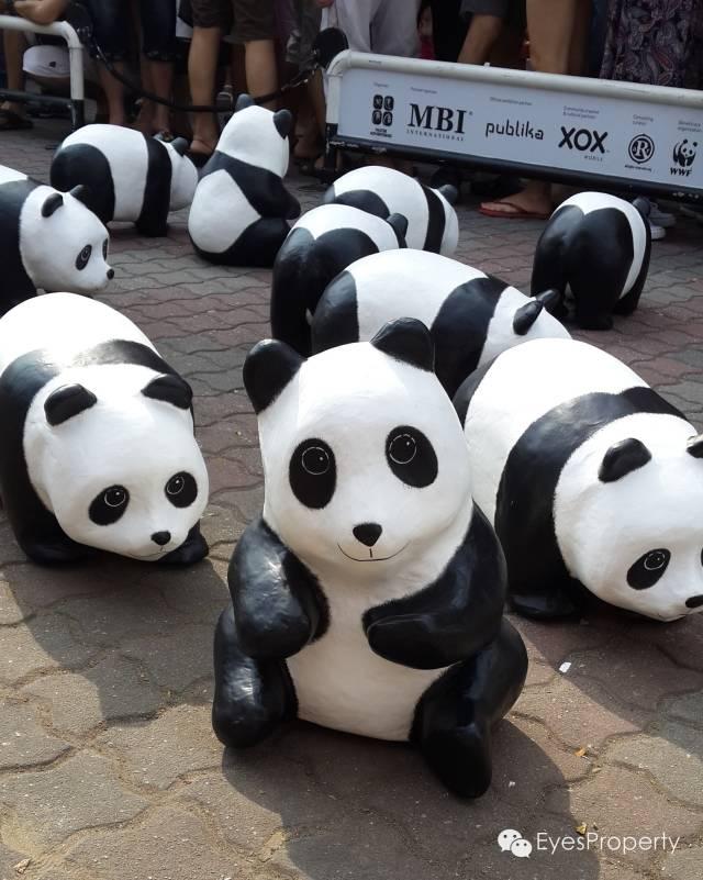 Panda in Malacca 09