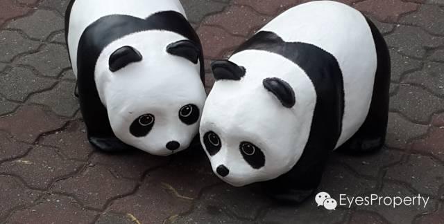Panda in Malacca 10