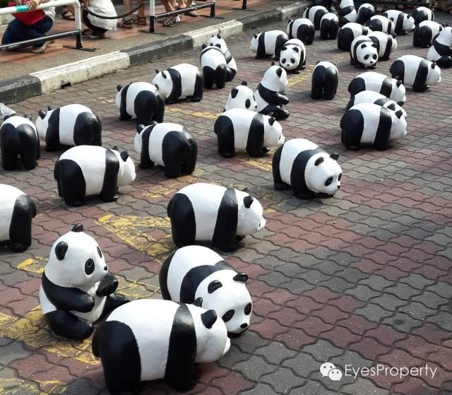 Panda in Malacca 11