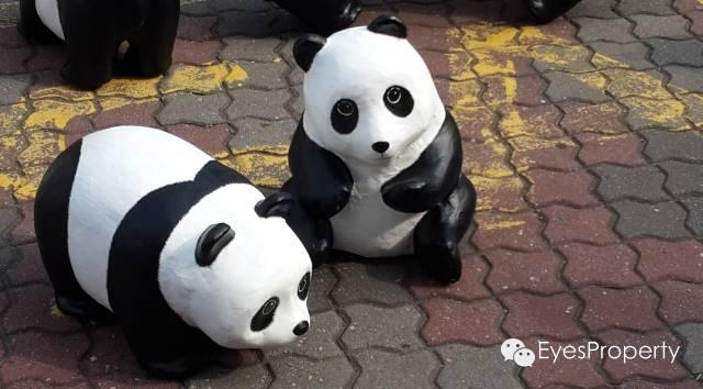 Panda in Malacca 12