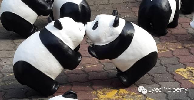 Panda in Malacca 13