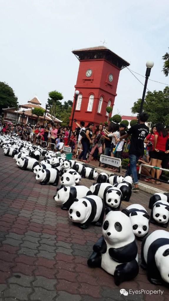 Panda in Malacca 14