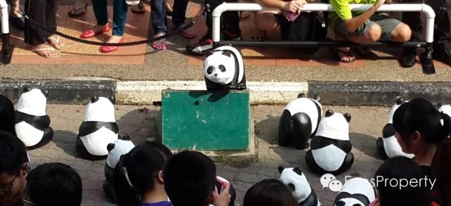 Panda in Malacca 15