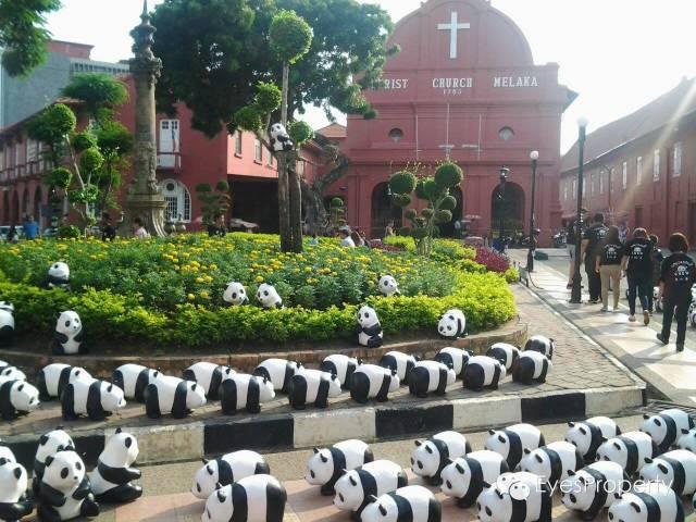Panda in Malacca 17
