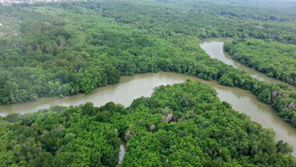 Ramsar Site